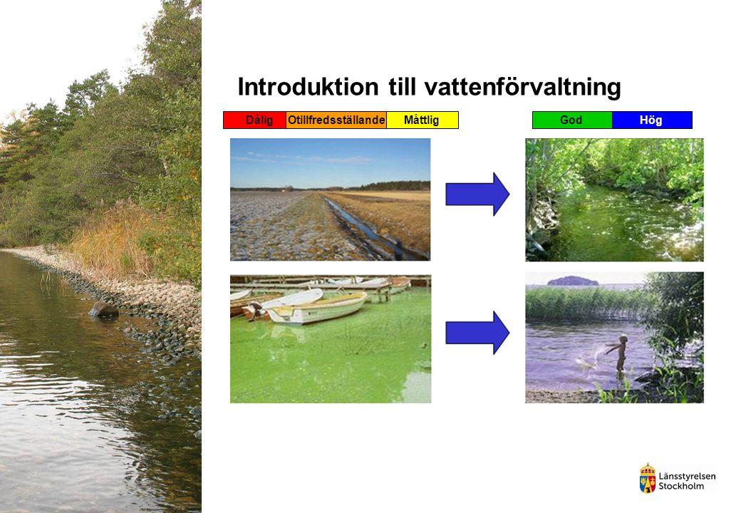 Introduktion till vattenförvaltning DåligOtillfredsställandeMåttligGodHög
