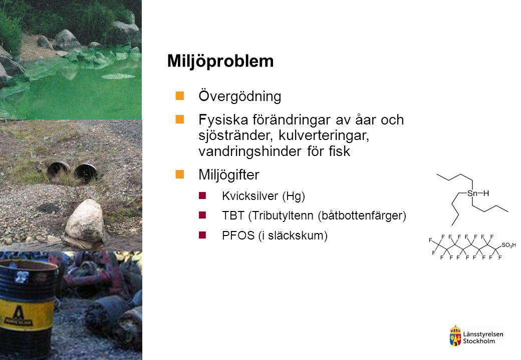 Miljöproblem Övergödning Fysiska förändringar av åar och sjöstränder, kulverteringar, vandringshinder för fisk Miljögifter Kvicksilver (Hg) TBT (Tribu