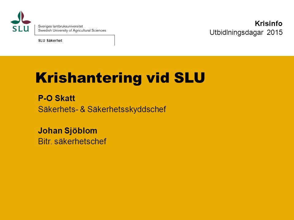 P-O Skatt Säkerhets- & Säkerhetsskyddschef Johan Sjöblom Bitr.