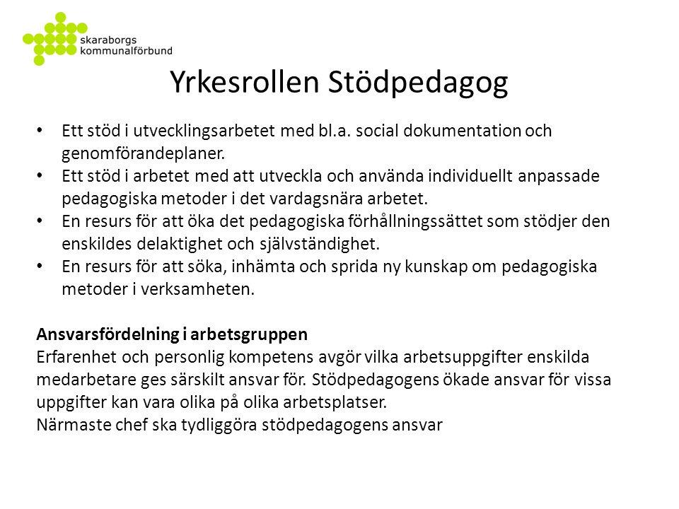 Framförda synpunkter och frågor Synpunkter på val av titlar: Syftet är nationellt lika / Skaraborg följer GR-regionens förslag.