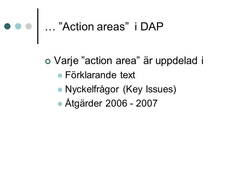 """… """"Action areas"""" i DAP Varje """"action area"""" är uppdelad i Förklarande text Nyckelfrågor (Key Issues) Åtgärder 2006 - 2007"""