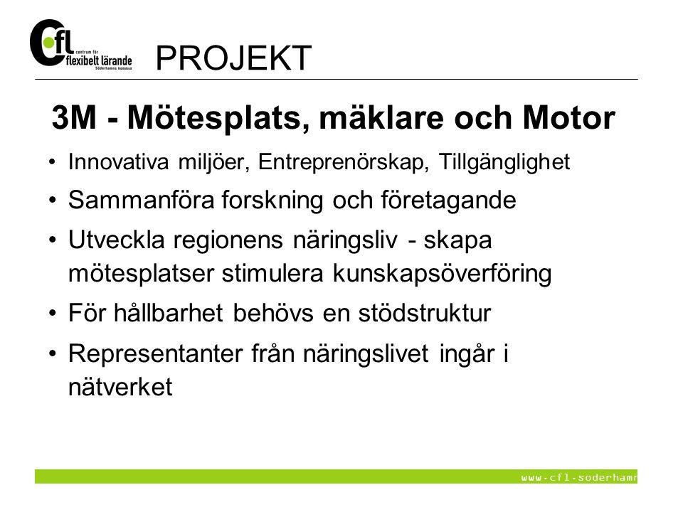 www.cfl.soderhamn.se 3M - Mötesplats, mäklare och Motor Innovativa miljöer, Entreprenörskap, Tillgänglighet Sammanföra forskning och företagande Utvec