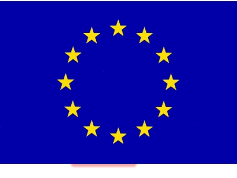 European federation nurses associations European specialists nursing organisations Nationella föreningen
