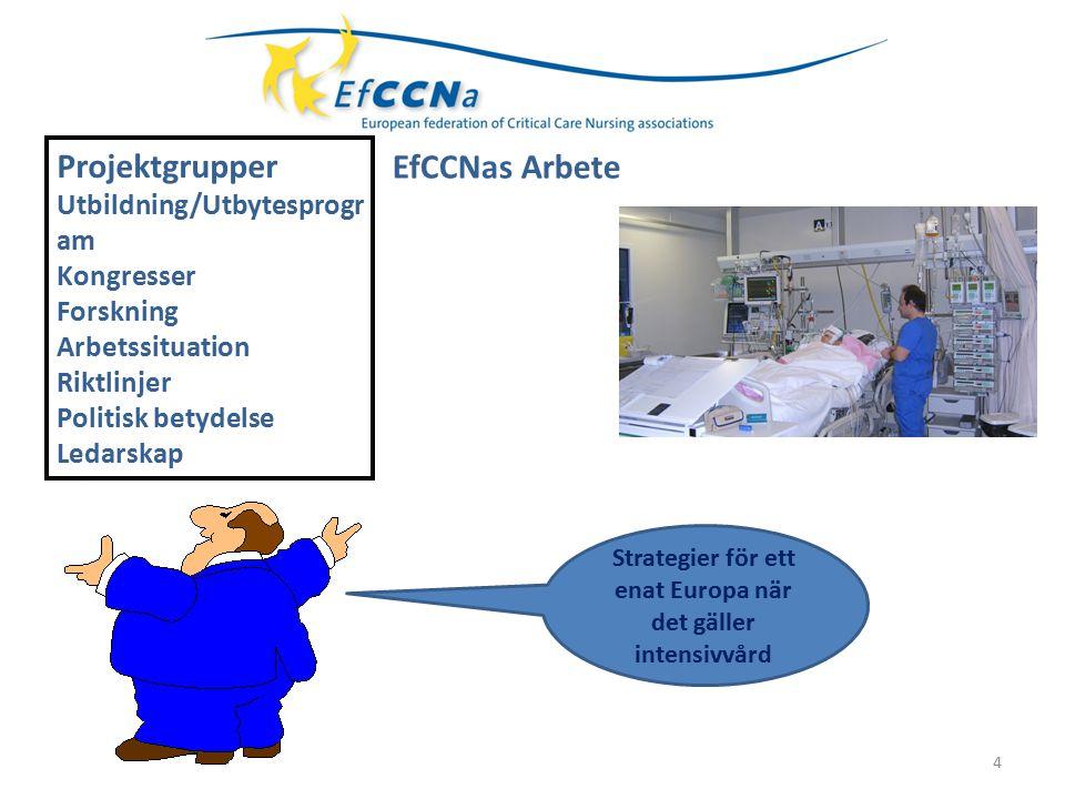  Studie om utbildning I Europa 2004  Riktlinjer för utbildning för specialisering inom intensivvård  EfCCNa Competency Tool for European Critical Care Nurses 2013 EfCCNa Competency Tool for European Critical Care Nurses 2013 5 Utbildning