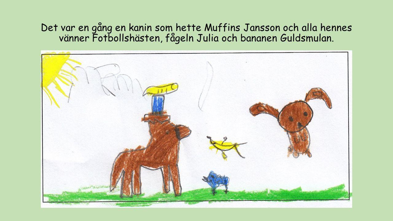 Det var en gång en kanin som hette Muffins Jansson och alla hennes vänner Fotbollshästen, fågeln Julia och bananen Guldsmulan.