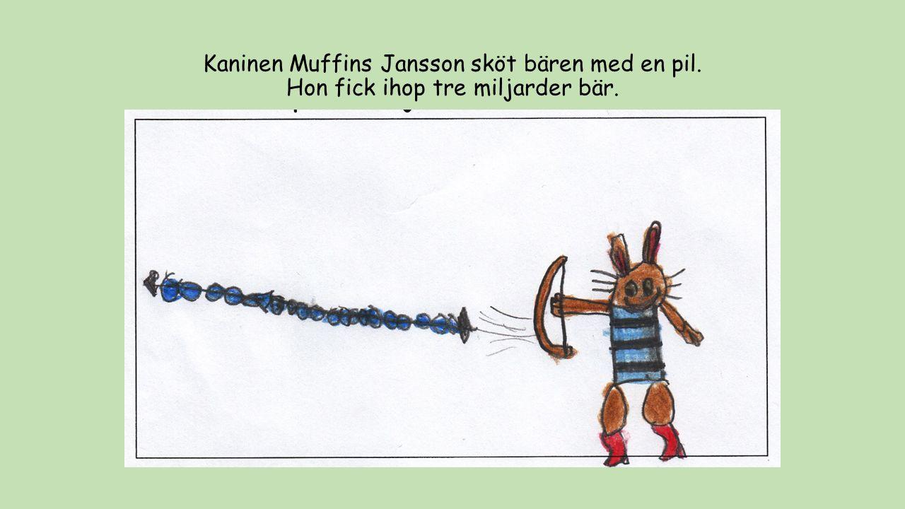 Kaninen Muffins Jansson sköt bären med en pil. Hon fick ihop tre miljarder bär.