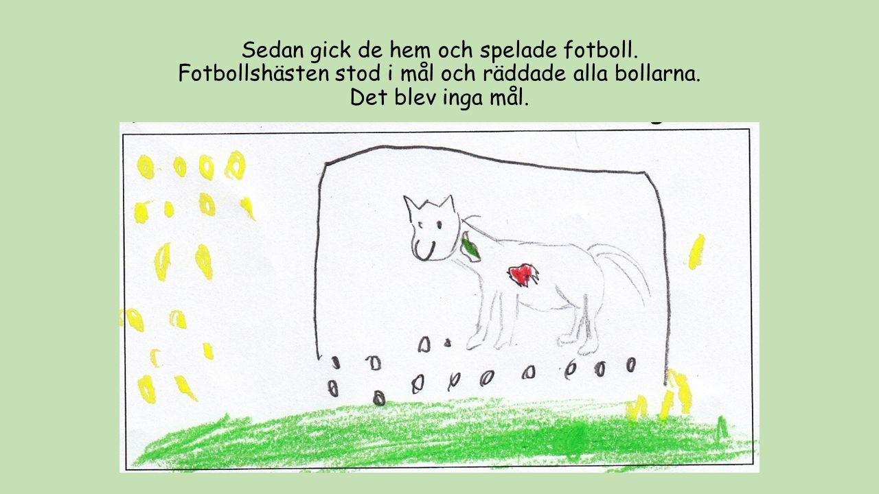 Sedan gick de hem och spelade fotboll. Fotbollshästen stod i mål och räddade alla bollarna. Det blev inga mål.