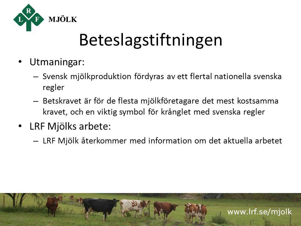 www.lrf.se/mjolk Beteslagstiftningen Utmaningar: – Svensk mjölkproduktion fördyras av ett flertal nationella svenska regler – Betskravet är för de flesta mjölkföretagare det mest kostsamma kravet, och en viktig symbol för krånglet med svenska regler LRF Mjölks arbete: – LRF Mjölk återkommer med information om det aktuella arbetet