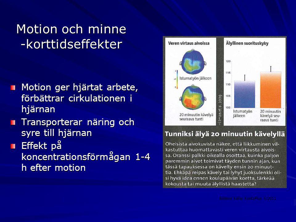 Motion och minne -korttidseffekter Motion ger hjärtat arbete, förbättrar cirkulationen i hjärnan Transporterar näring och syre till hjärnan Effekt på