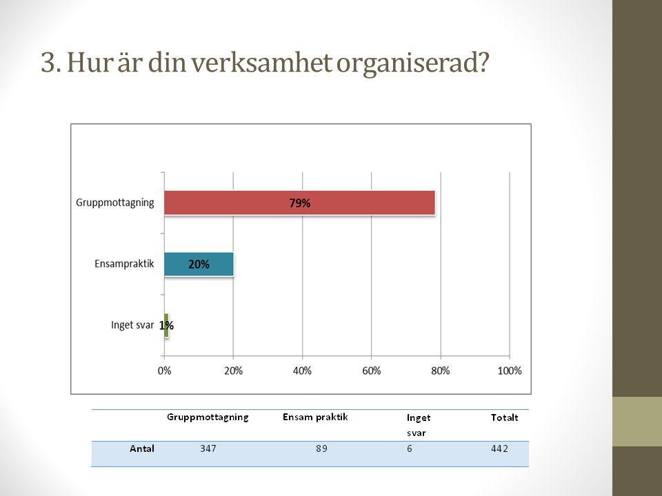 3. Hur är din verksamhet organiserad?