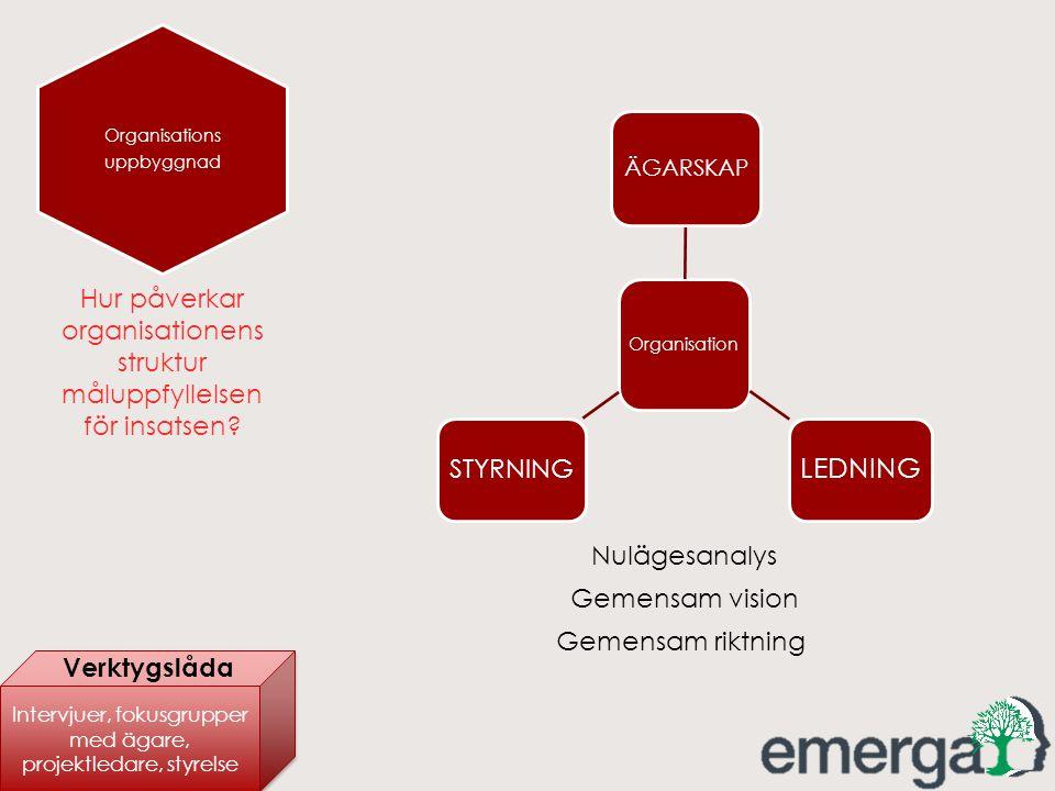 Organisations uppbyggnad Organisation ÄGARSKAP LEDNING STYRNING Nulägesanalys Gemensam vision Gemensam riktning Hur påverkar organisationens struktur