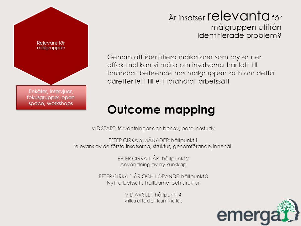 Relevans för målgruppen Är insatser relevanta för målgruppen utifrån identifierade problem? Enkäter, intervjuer, fokusgrupper, open space, workshops G
