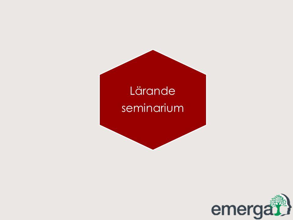 Lärande seminarium