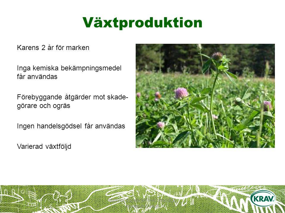 Material framtaget med stöd från Jordbruksverket Växtproduktion Karens 2 år för marken Inga kemiska bekämpningsmedel får användas Förebyggande åtgärder mot skade- görare och ogräs Ingen handelsgödsel får användas Varierad växtföljd
