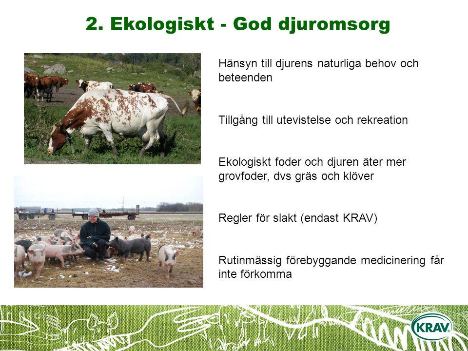 2. Ekologiskt - God djuromsorg Hänsyn till djurens naturliga behov och beteenden Tillgång till utevistelse och rekreation Ekologiskt foder och djuren