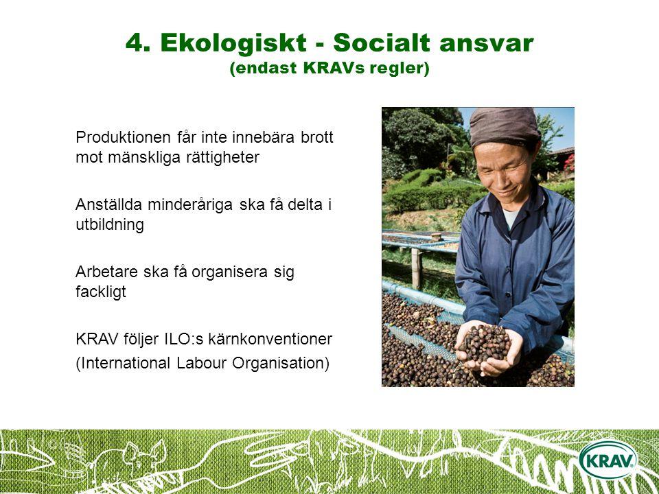 Produktionen får inte innebära brott mot mänskliga rättigheter Anställda minderåriga ska få delta i utbildning Arbetare ska få organisera sig fackligt KRAV följer ILO:s kärnkonventioner (International Labour Organisation) 4.