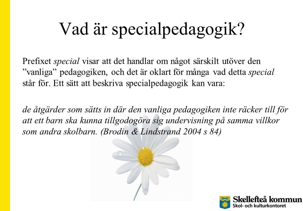 """Vad är specialpedagogik? Prefixet special visar att det handlar om något särskilt utöver den """"vanliga"""" pedagogiken, och det är oklart för många vad de"""