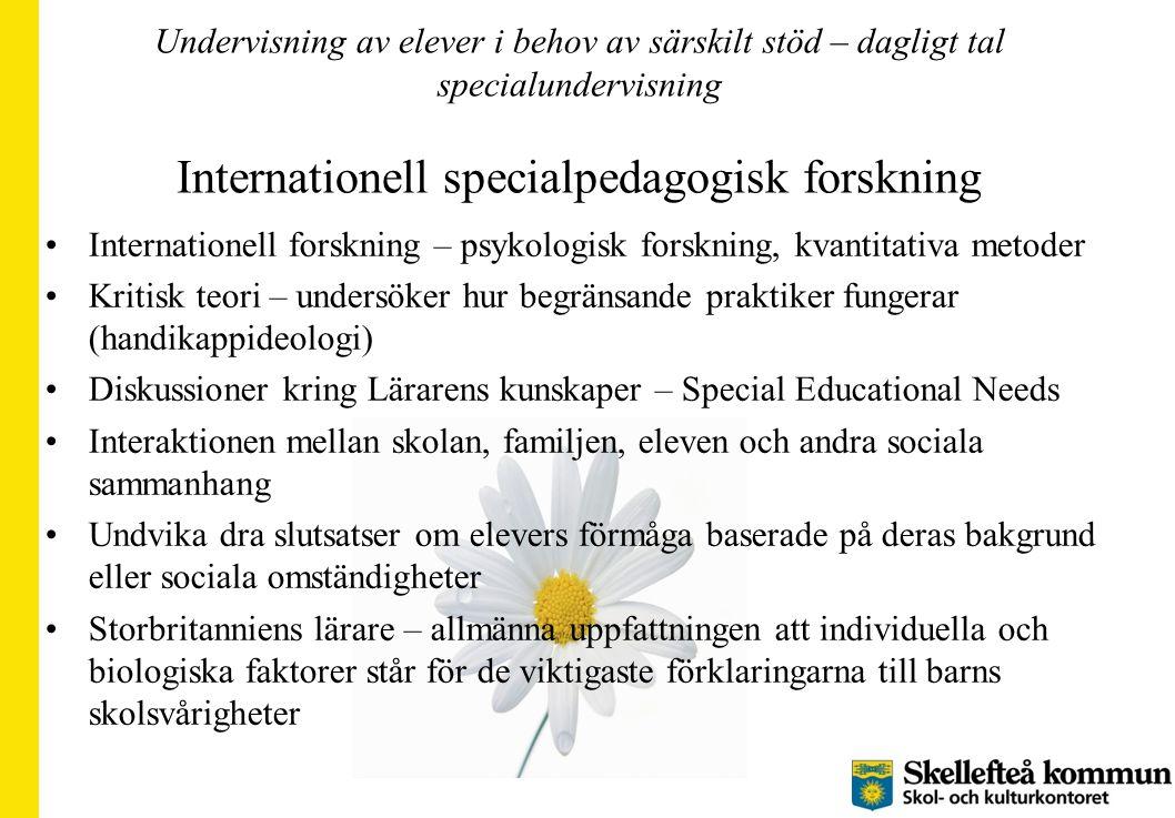Undervisning av elever i behov av särskilt stöd – dagligt tal specialundervisning Internationell specialpedagogisk forskning Internationell forskning
