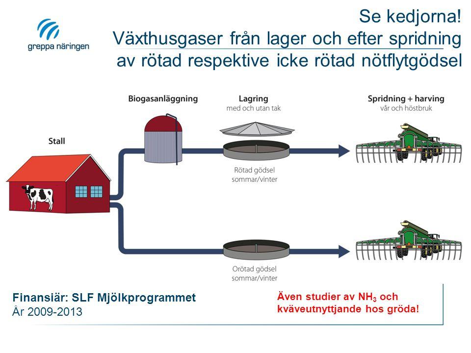 Även studier av NH 3 och kväveutnyttjande hos gröda! Finansiär: SLF Mjölkprogrammet År 2009-2013 Se kedjorna! Växthusgaser från lager och efter spridn