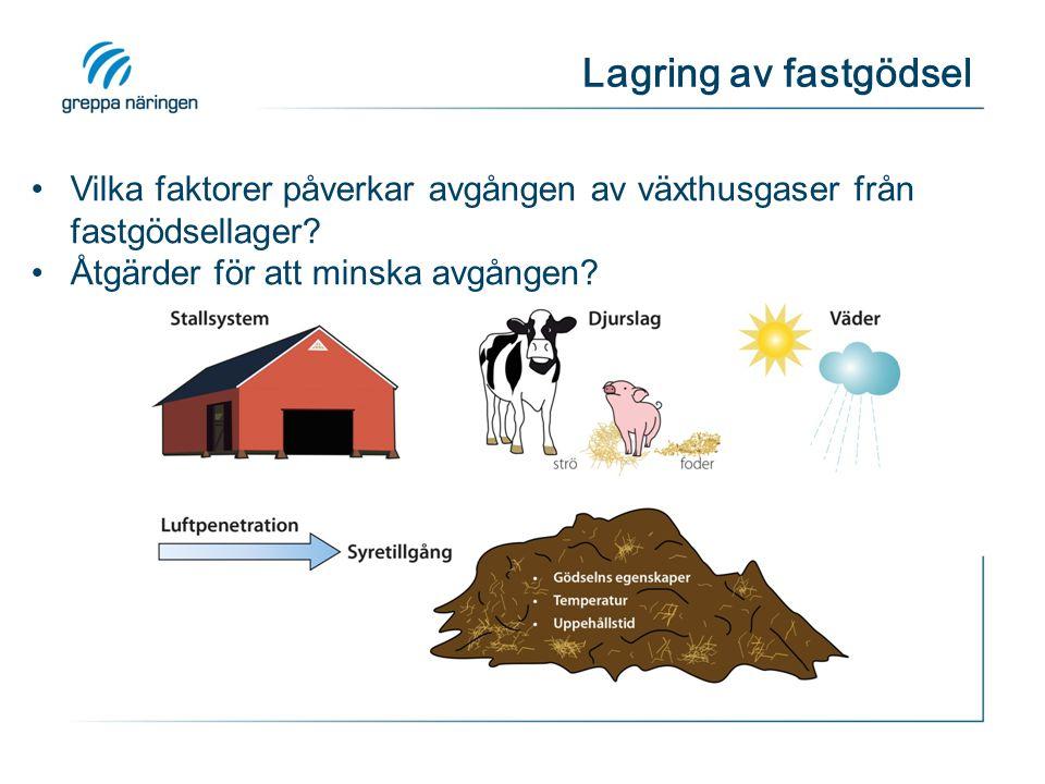 Lagring av fastgödsel Vilka faktorer påverkar avgången av växthusgaser från fastgödsellager? Åtgärder för att minska avgången?