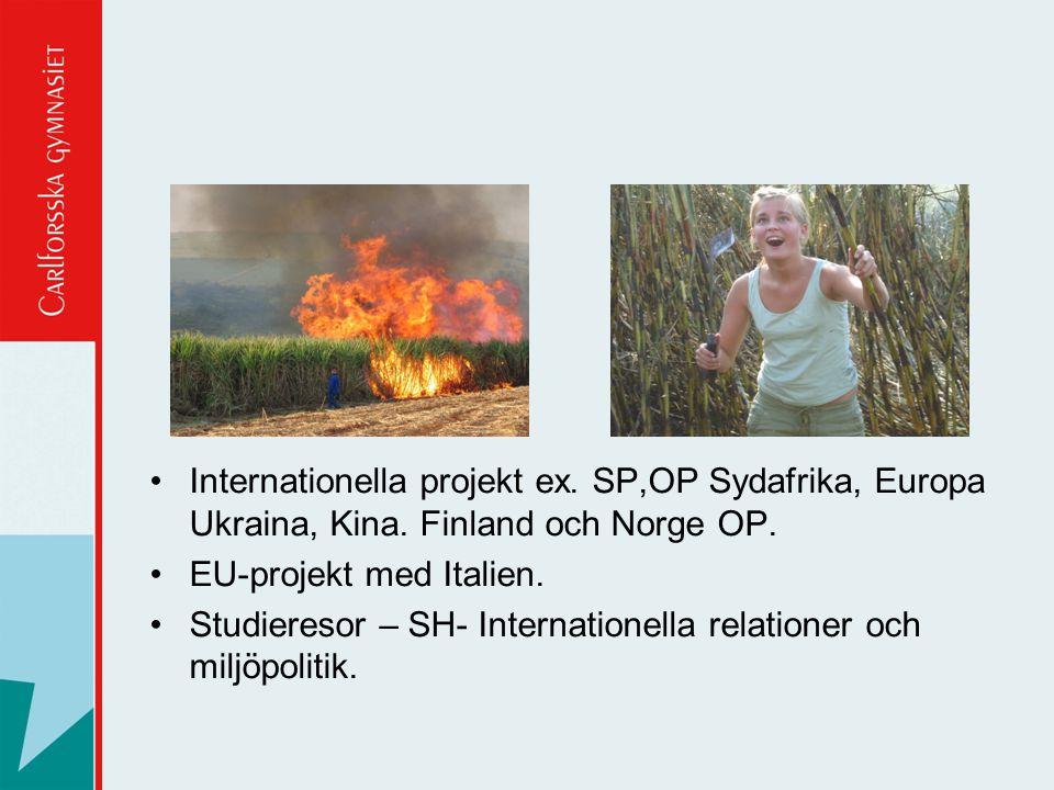 Internationella projekt ex. SP,OP Sydafrika, Europa Ukraina, Kina. Finland och Norge OP. EU-projekt med Italien. Studieresor – SH- Internationella rel
