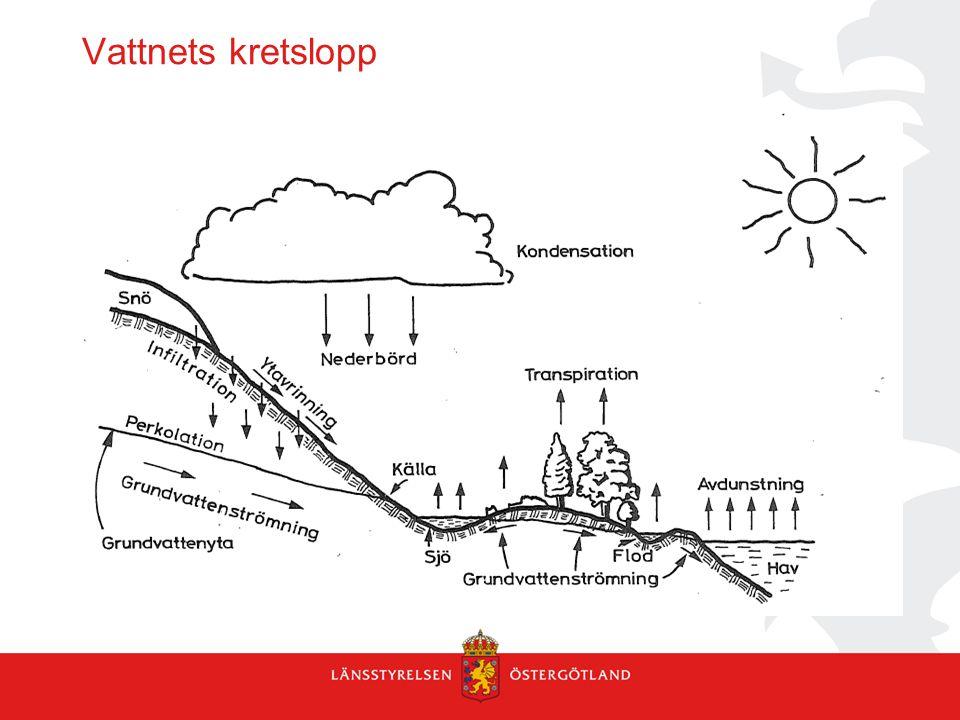 Grundvattennivåer i olika geologier Knutsson och Fagerlind, 1977