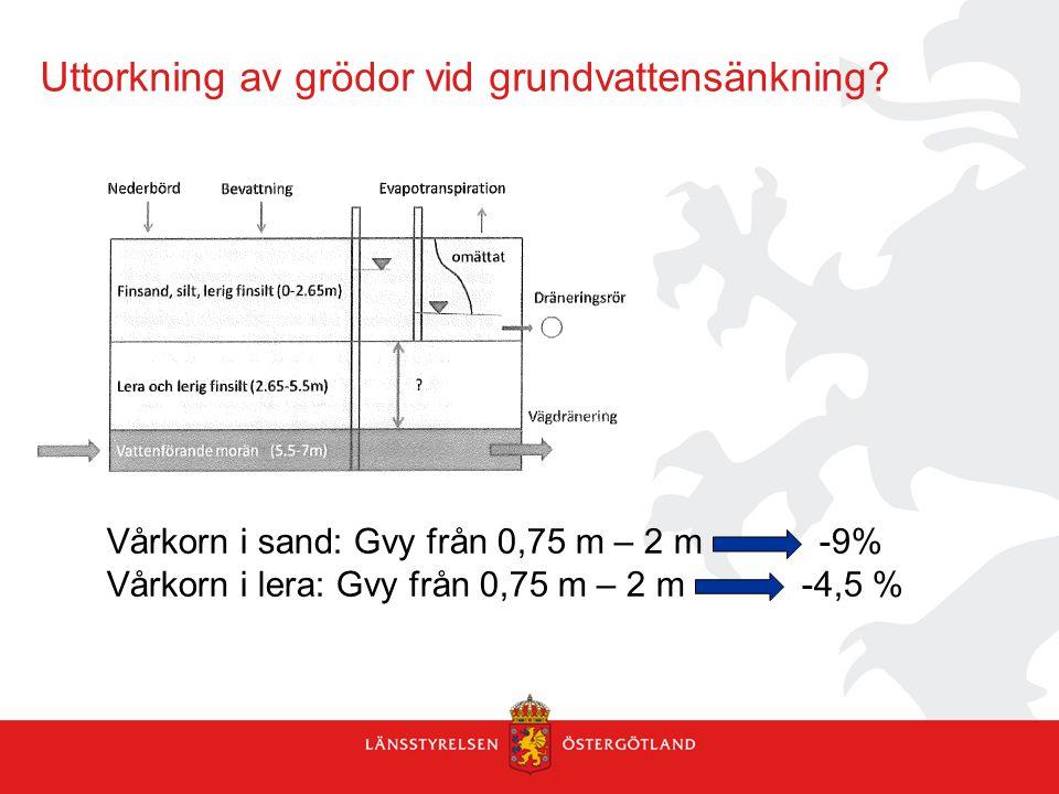 Uttorkning av grödor vid grundvattensänkning? Vårkorn i sand: Gvy från 0,75 m – 2 m -9% Vårkorn i lera: Gvy från 0,75 m – 2 m -4,5 %