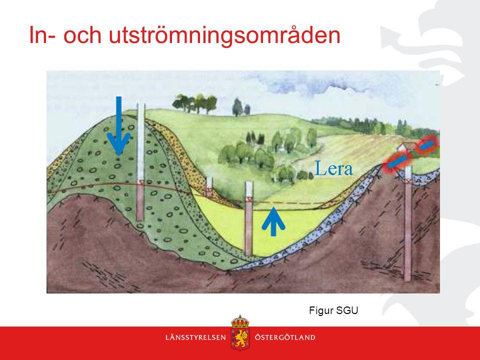 Uttorkning av grödor vid grundvattensänkning.