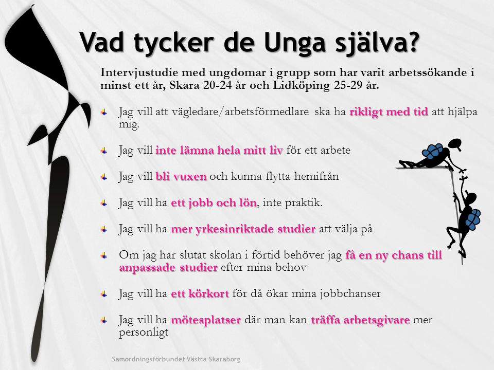 Vad tycker de Unga själva? Intervjustudie med ungdomar i grupp som har varit arbetssökande i minst ett år, Skara 20-24 år och Lidköping 25-29 år. rikl