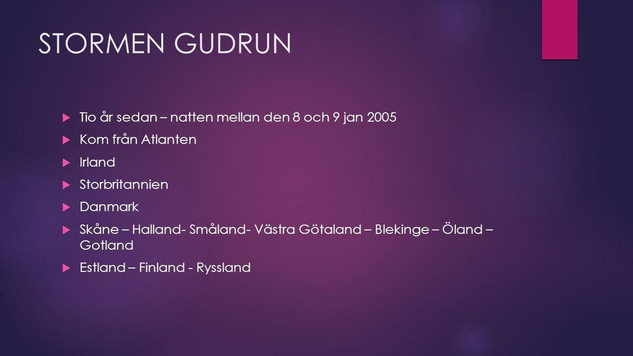 STORMEN GUDRUN  Tio år sedan – natten mellan den 8 och 9 jan 2005  Kom från Atlanten  Irland  Storbritannien  Danmark  Skåne – Halland- Småland- Västra Götaland – Blekinge – Öland – Gotland  Estland – Finland - Ryssland