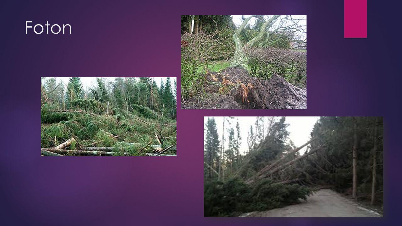 Storm  Storm kallas vinden både på land och till sjöss, när vindhastigheten är mellan 24,5 och 28,4 meter per sekund (m/s).På land kan stormvindar rycka upp träd och orsaka skador på hus.