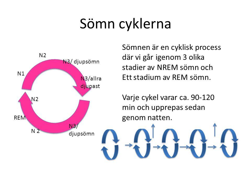 Sömn cyklerna Sömnen är en cyklisk process där vi går igenom 3 olika stadier av NREM sömn och Ett stadium av REM sömn. Varje cykel varar ca. 90-120 mi