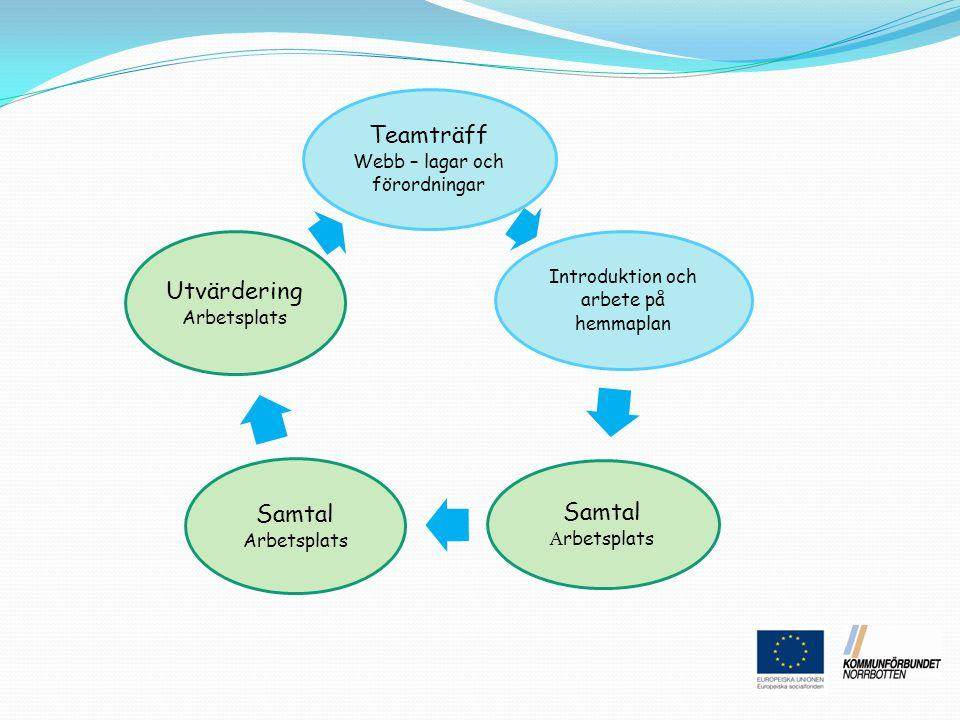 Teamträff Webb – lagar och förordningar Introduktion och arbete på hemmaplan Samtal A rbetsplats Utvärdering Arbetsplats