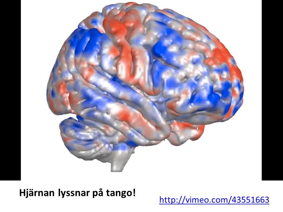 http://vimeo.com/43551663 Hjärnan lyssnar på tango!