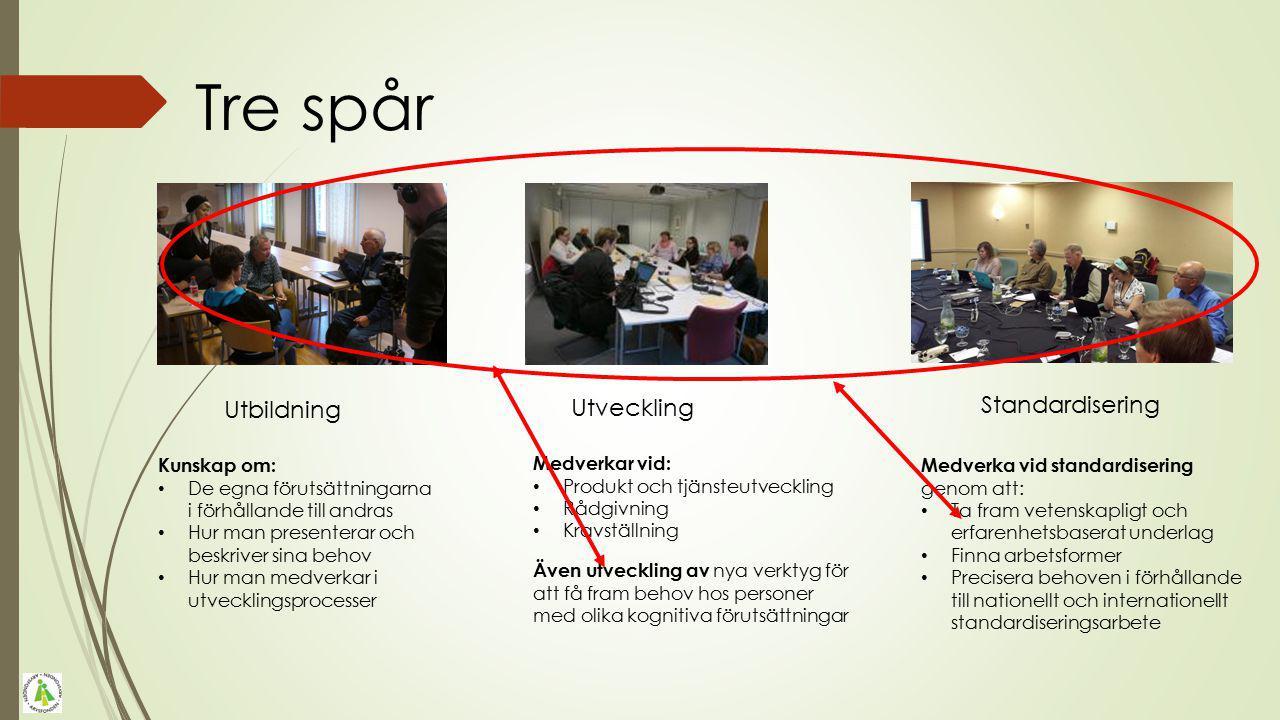 Tre spår Utbildning Utveckling Standardisering Kunskap om: De egna förutsättningarna i förhållande till andras Hur man presenterar och beskriver sina