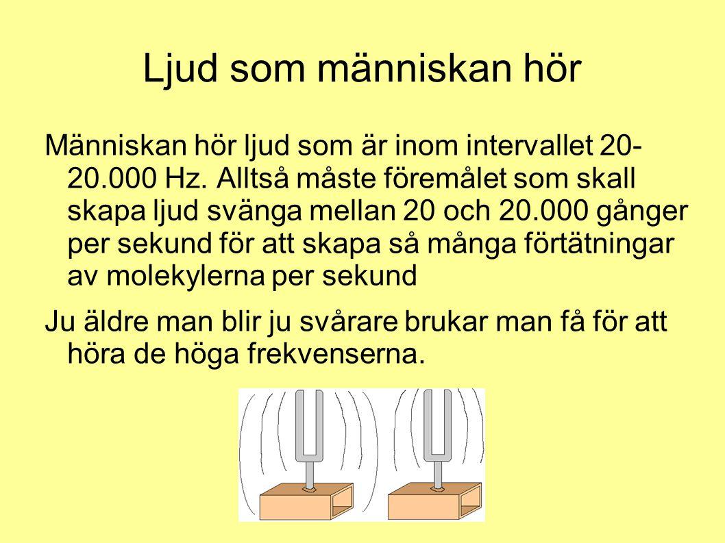 Ljud som människan hör Människan hör ljud som är inom intervallet 20- 20.000 Hz. Alltså måste föremålet som skall skapa ljud svänga mellan 20 och 20.0