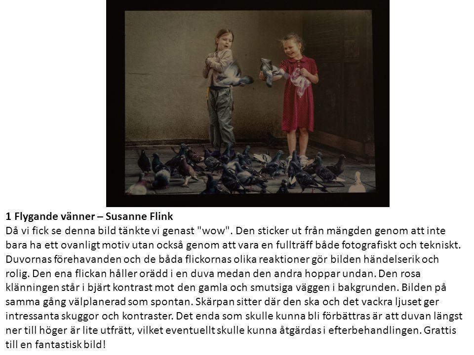 1 Flygande vänner – Susanne Flink Då vi fick se denna bild tänkte vi genast wow .
