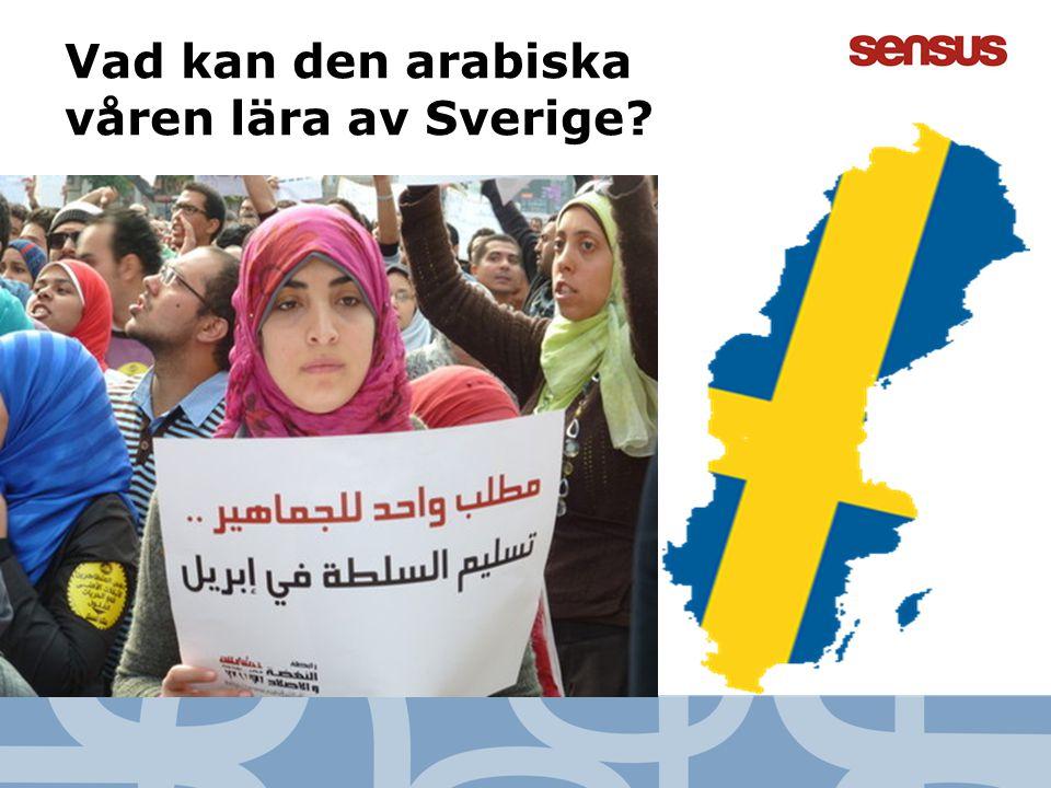 8 Vad kan den arabiska våren lära av Sverige?