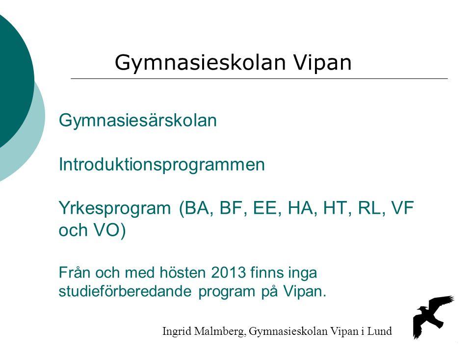 Gymnasiesärskolan Introduktionsprogrammen Yrkesprogram (BA, BF, EE, HA, HT, RL, VF och VO) Från och med hösten 2013 finns inga studieförberedande prog