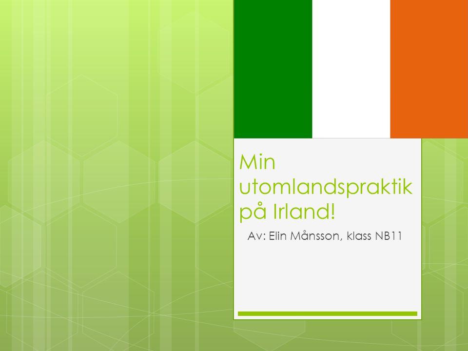 Min utomlandspraktik på Irland! Av: Elin Månsson, klass NB11