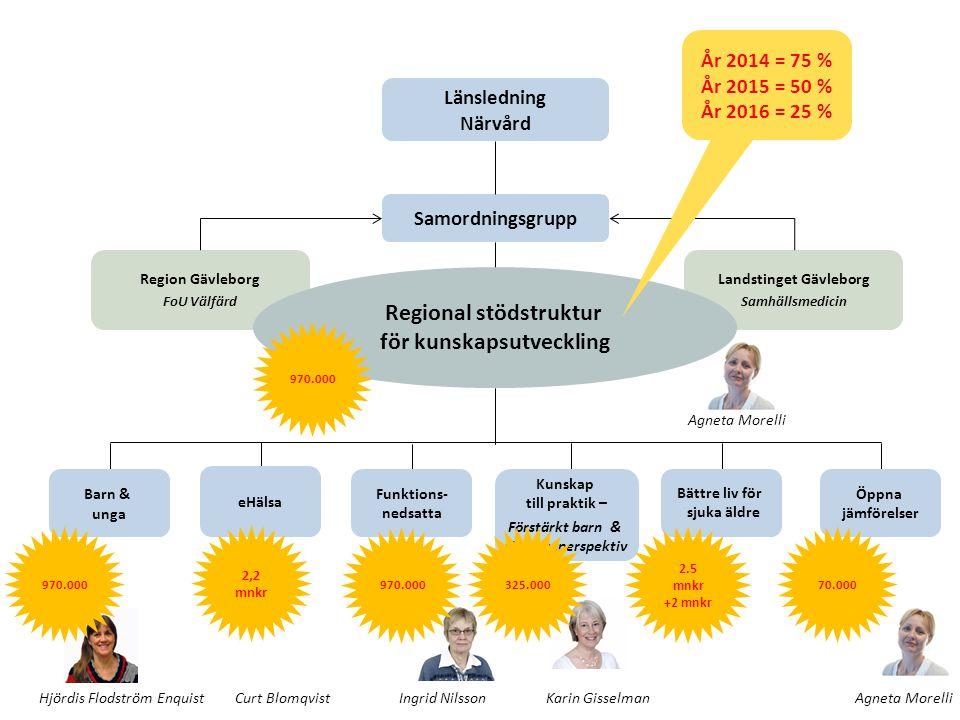 Sammanhållen vård och omsorg om de mest sjuka äldre Insatser för eHälsa 18,9 miljoner Bättre liv sjuka äldre Utvecklingsledare 72 miljoner Nytt 2013 Ny beräkningsmodell (god läkemedelsbehandling och sammanhållen vård och omsorg) Ersättning utbetalas när det har skett en förbättring som bedöms vara varaktig och inte bero på slumpen.