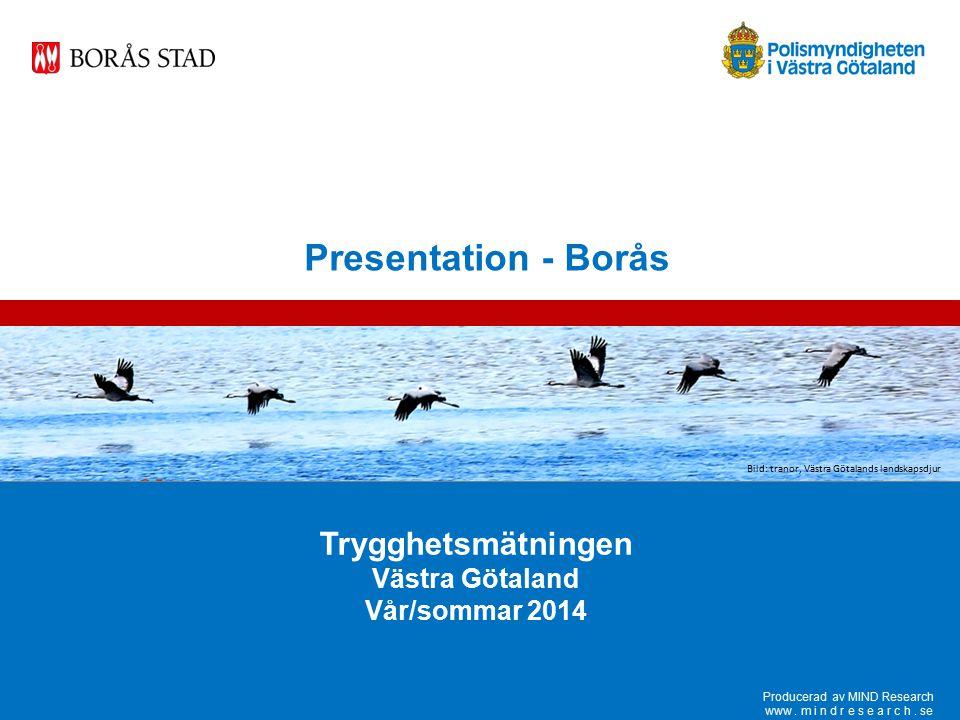 Trygghetsmätningen vår/sommar 2014 www.mindresearch.se 62 Medel Borås Högsta nivån Lägsta nivån Andel som har haft någon närstående som blivit utsatt för brott