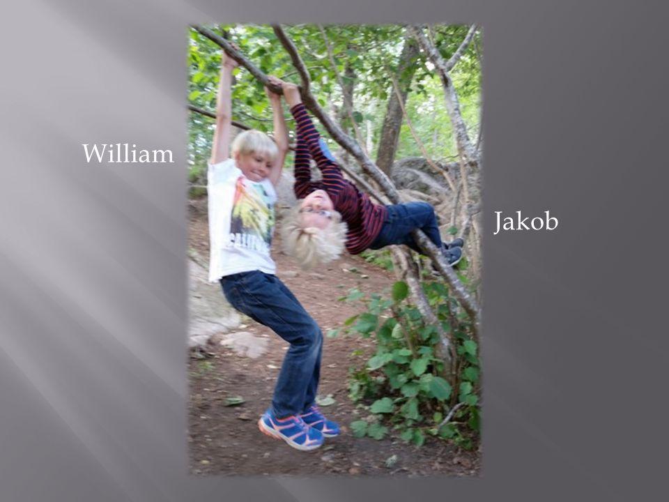 William Jakob