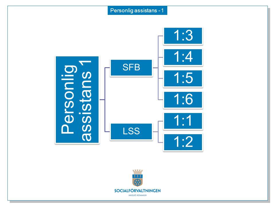 Personlig assistans - 1 Personlig assistans 1 SFB 1:3 1:4 1:5 1:6 LSS 1:1 1:2