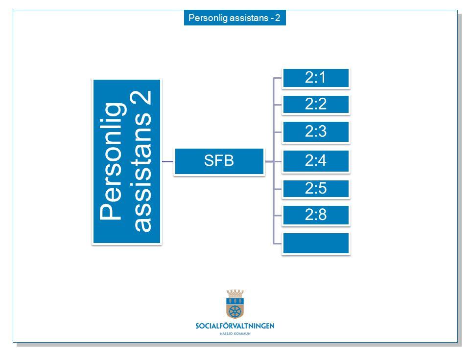 Personlig assistans - 2 Personlig assistans 2 SFB 2:1 2:2 2:3 2:4 2:5 2:8