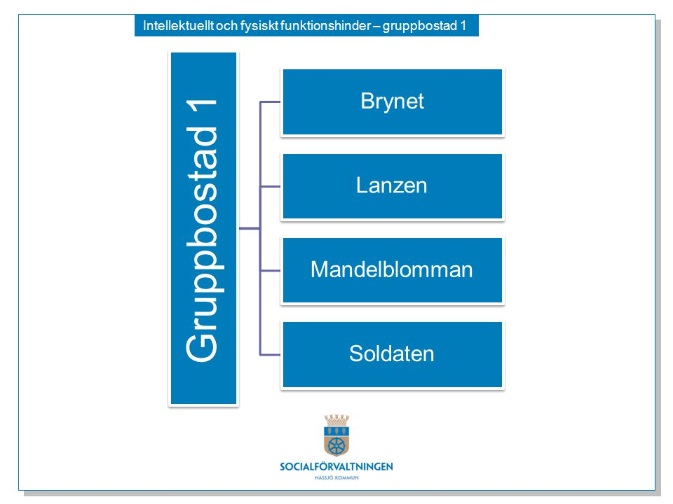 Intellektuellt och fysiskt funktionshinder – gruppbostad 1 Gruppbostad 1 Brynet Lanzen Mandelblomman Soldaten