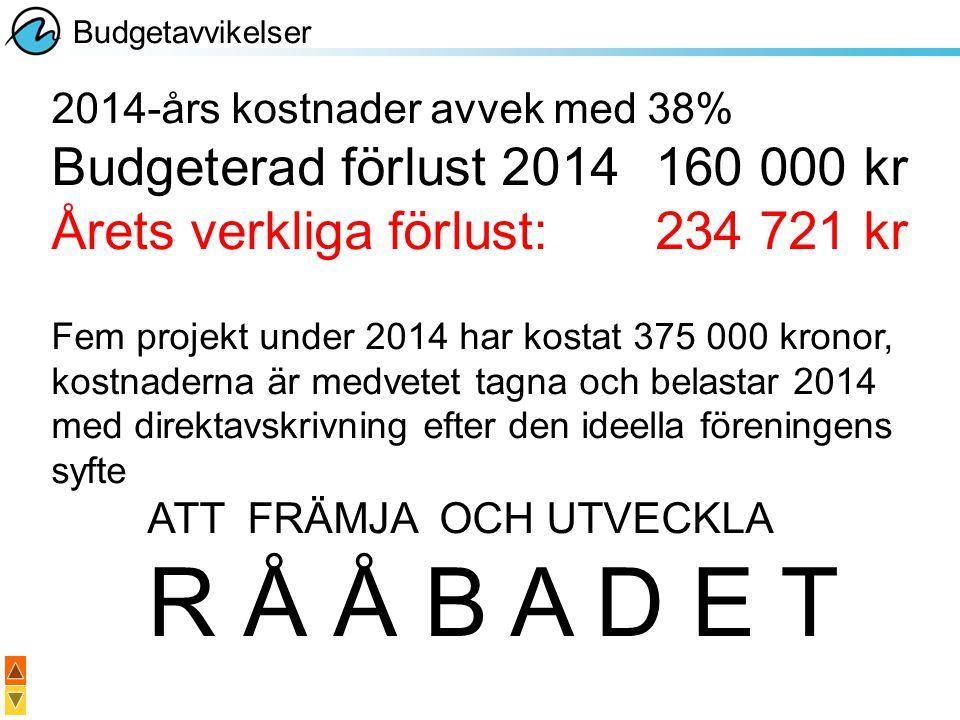 2014-års kostnader avvek med 38% Budgeterad förlust 2014160 000 kr Årets verkliga förlust:234 721 kr Fem projekt under 2014 har kostat 375 000 kronor,