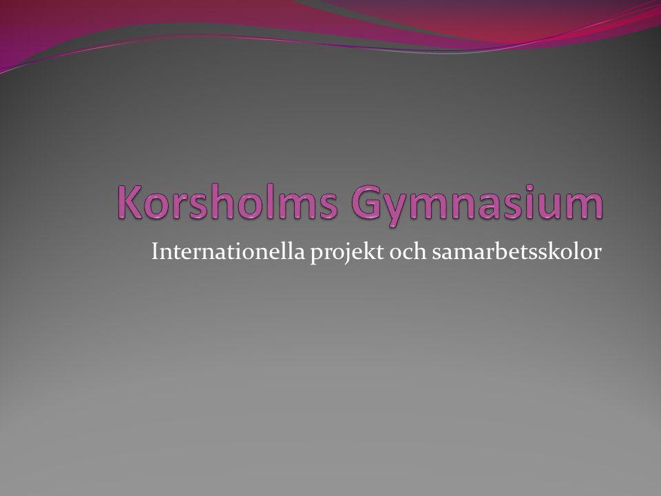 Internationella projekt och samarbetsskolor