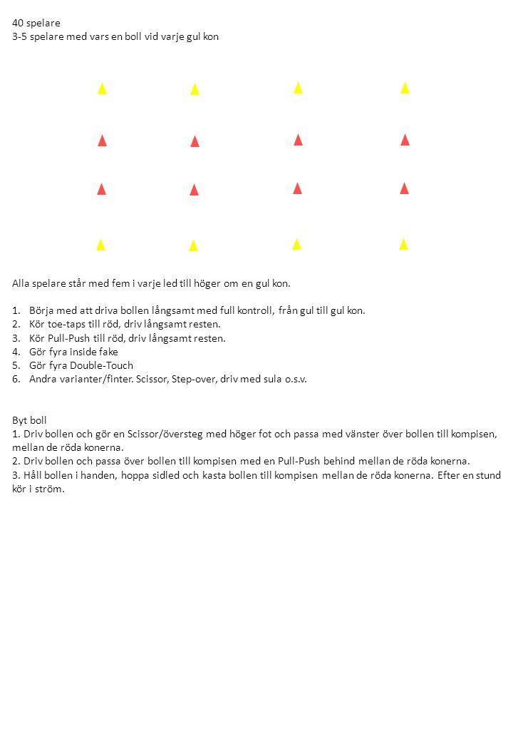 40 spelare 3-5 spelare med vars en boll vid varje gul kon Alla spelare står med fem i varje led till höger om en gul kon.