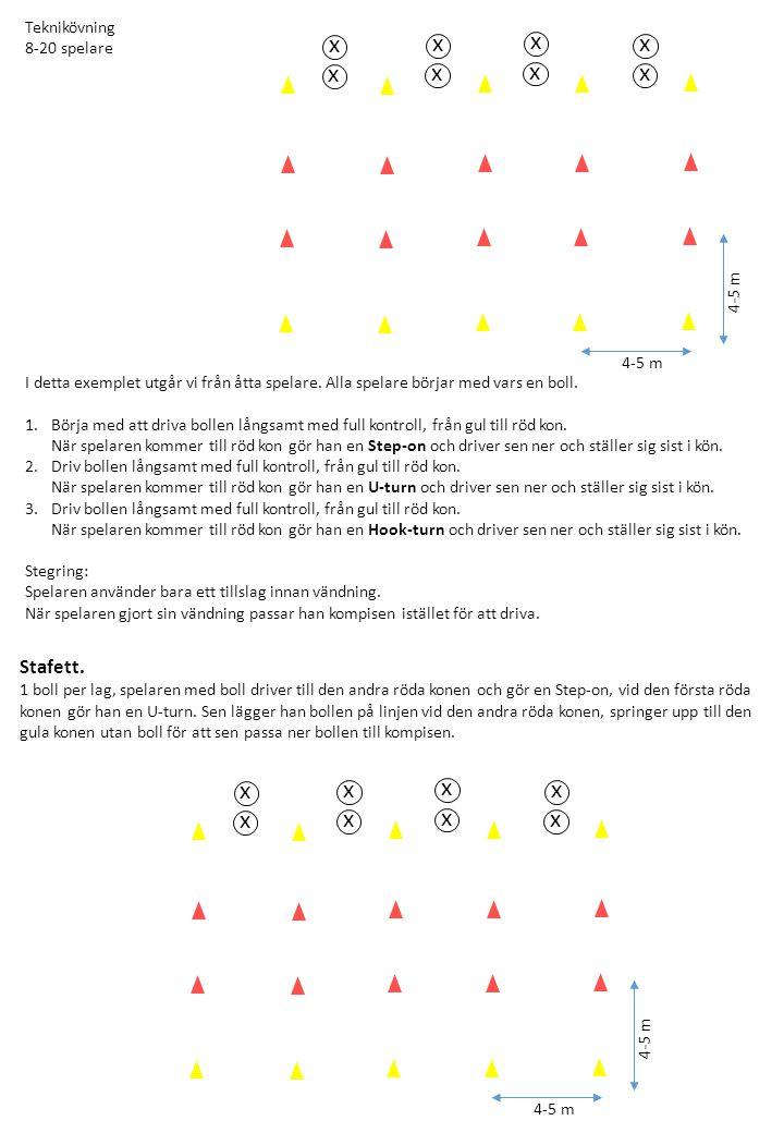 Teknikövning 8-20 spelare I detta exemplet utgår vi från åtta spelare.